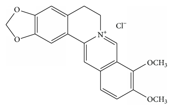 Berberine 95%